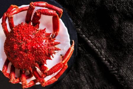 Steamed crab on wooden background