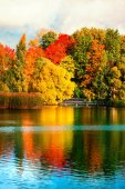 Beautiful autumn park with colourful leaves, trees and lake. Autumn Landscape.Park in Autumn. Forest in Octobe