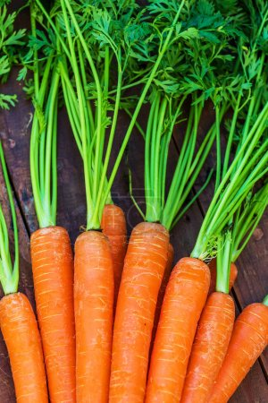 Photo for Raw Carrots  on dark wooden background. Close up. A bunch of carrots - Royalty Free Image