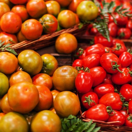 Photo for Fresh ripe tomatoes in baskets in market - Royalty Free Image