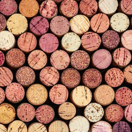 Photo pour Bouchons de vin Modèle. Divers bouchons de vin en bois comme fond. Concept d'aliments et boissons - image libre de droit
