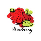 hand drawn beautiful strawberry