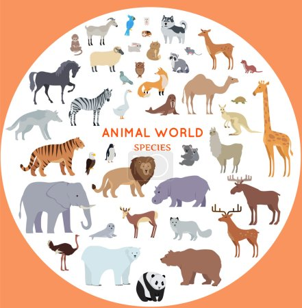 Illustration for Set of animal species vector. Flat style. Big collection of mammals of different geographical latitudes and continents. Wild and domestic herbivores, predators, birds illustrations. Isolated on white. - Royalty Free Image