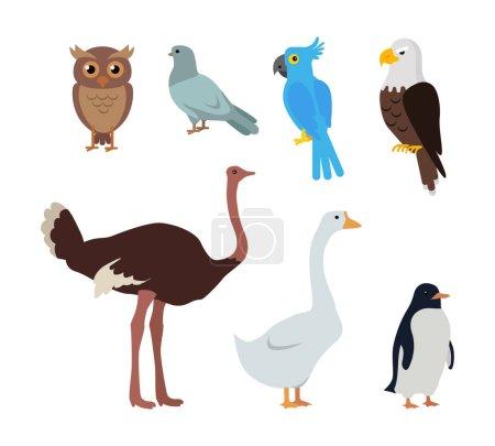 Tourterelle hibou Perroquet bleu Aigle Autruche Oie Pingouin