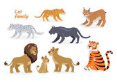 Cat family Felidae family of cats Felids Pantherinae comprising tiger lion jaguar leopard snow leopard ounce and clouded leopards Lion family Big wild cats Flat style Vector illustration