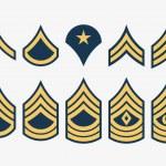Military Ranks Stripes and Chevrons. Vector Set Ar...