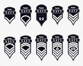 Military Ranks Stripes and Chevrons Vector Set Army Insignia
