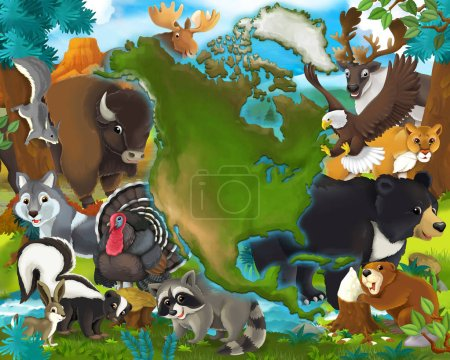 Cartoon animals north america