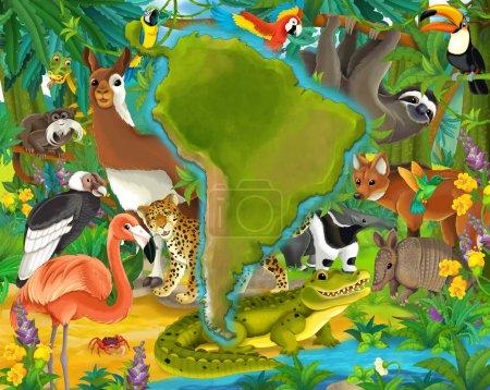 Cartoon animals south america