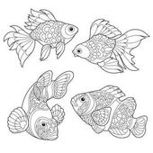 Zentangle stylized fish species