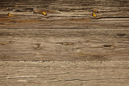 Wood grain background texture plank, old striped timber board.