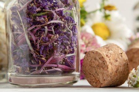 Drying and harvesting of medicinal herbs, homeopat...