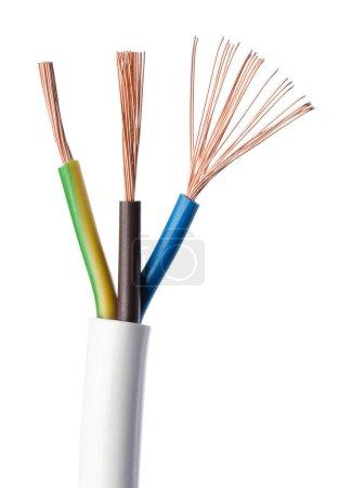 Photo pour Câble d'alimentation électrique Iec standard sur fond blanc. Coupe transversale. Gaine de câble, isolants en marron, bleu et jaune-vert avec des fils de cuivre tressés flexibles. Macro gros plan photo. - image libre de droit