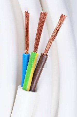 Photo pour Câble d'alimentation électrique se bouchent. Code de couleur standard IEC. Coupe transversale avec gaine de câble, isolants en brun, couleur bleue et jaune-vert avec flexible échoués de fils de cuivre. Photo macro. - image libre de droit