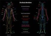 Woman Meridian System Description Chart Black