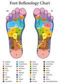 Foot Reflexology Table