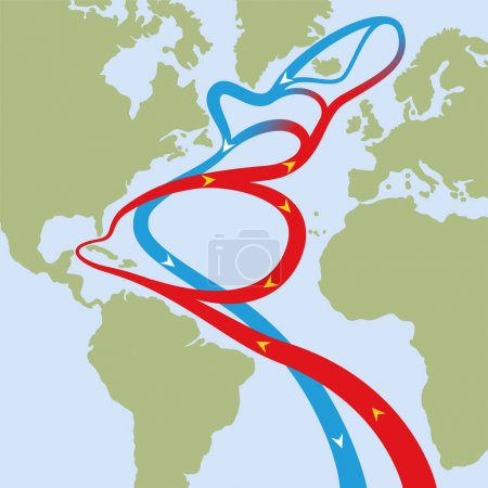 Golfstrom Atlantischer Ozean
