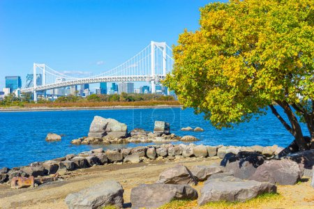Photo for Odaiba island. Japan. Rainbow Bridge. Tokyo City landscape. Traveling on the artificial islands of Japan. Trip to the island of Odaiba. Pacific bay. East Asia. Suspension bridge on a wood background. - Royalty Free Image