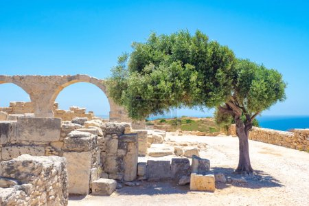 Photo for Cyprus. Pathos. Archaeological Park of Paphos. Excavations under the open sky. Museum Ruins on the background of blue sky. Byzantine ruins. Panorama of Cyprus. Travels in Paphos. Tree near the ruins - Royalty Free Image
