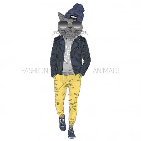 cat hipster dressed up in leather jacket