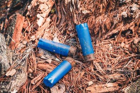 Cartouches vides de tir sur un arbre tombé après avoir chassé dans la forêt