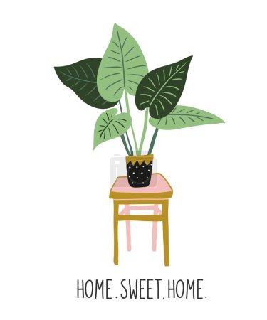 Hand drawn tropical house plant