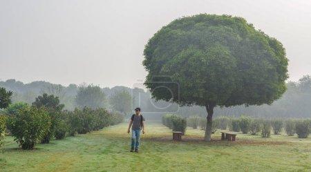 Photo pour Un homme marchant dans un parc verdoyant avec un énorme arbre tôt le matin . - image libre de droit