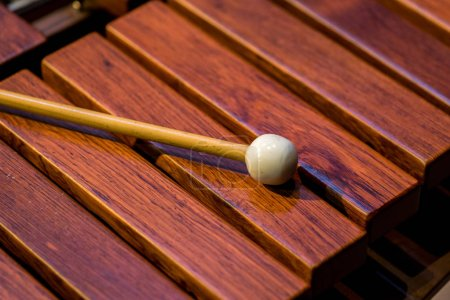 Close view on wooden old instrument xylofone...