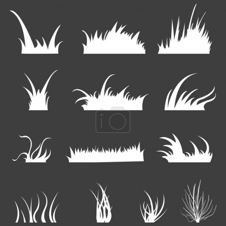 Illustration for Set of White Grass on Black Background, vector, illustration - Royalty Free Image
