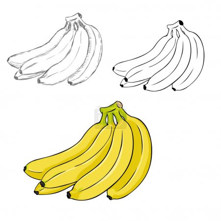 Set of Bunches of Bananas