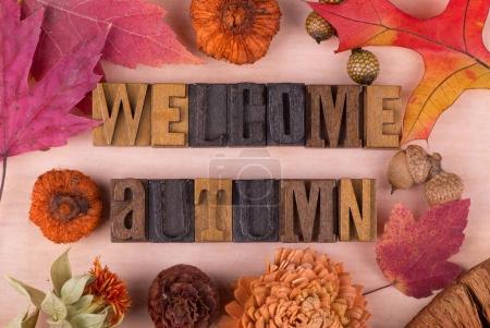 Photo pour Bienvenue à l'automne un texte bois avec décorations automne - image libre de droit