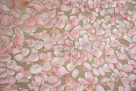 Bath filled with petals