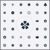 Vector Illustration Set Of Simple  Icons. Elements Victoria, Crocus, Floret And Other Synonyms Lucky, Peony And Orchids.