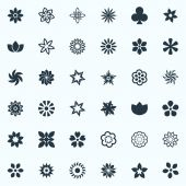 Vector Illustration Set Of Simple  Icons. Elements Larkspur, Peonies, Gerberas And Other Synonyms Hibiscus, Rose And Ornament.