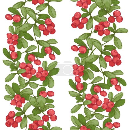Illustration for Cranberry. Seamless pattern, background. Graphic drawing, engraving style. Vector illustration isolated on white background - Royalty Free Image