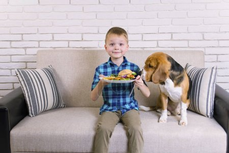 funny boy and dog beagle eating fried potatoes and a hamburger on the sofa in the room