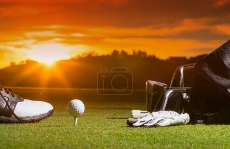 Golf club and Golf ball in bag on grass