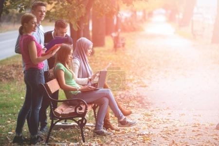 Photo for Group of young people using laptop and tablet on a park bench, having fun, talking, hanging out - Royalty Free Image