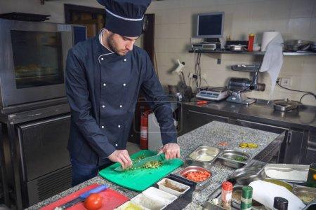 Photo pour Chef de restaurant garnissant un plat de légumes, récolte sur les mains, image filtrée - image libre de droit