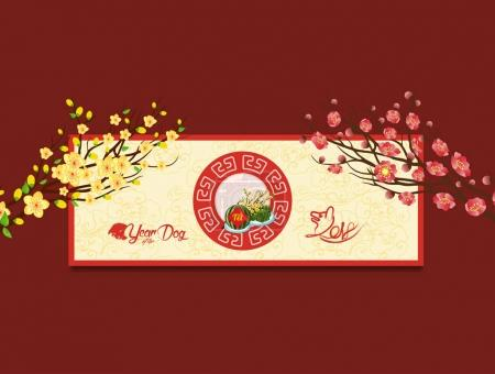 Happy new year. Vietnamese new year. Translation Tet Lunar new year 2018