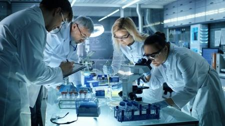 Team of Medical Research Scientists Collectively Working on a Ne