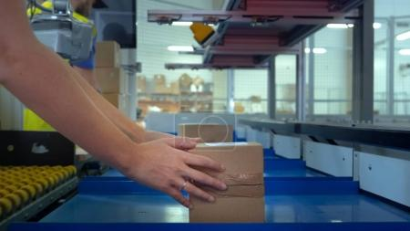 Worker Takes Parcel From Moving Belt Conveyor at Post Sorting Of