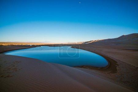 landscape of desert with little oasis