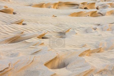 magnificent sandy waves