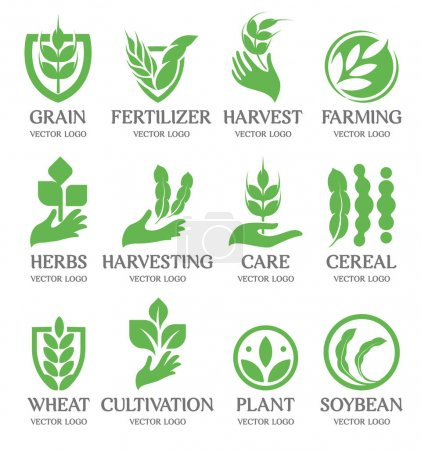 Illustration for Isolated abstract green color wheat ear logo collection. Nature element logotype set. Leaf in human hand icon. Agricultural organic products signs. Harvesting vector illustration - Royalty Free Image