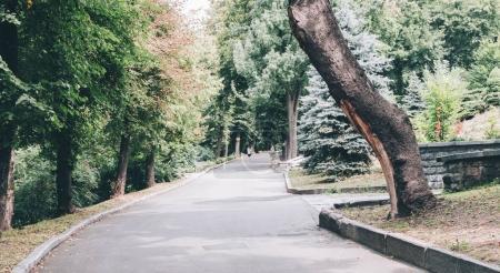 Big City Park