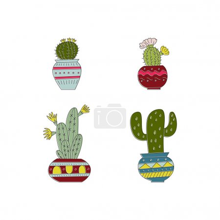 hand drawn cactuses