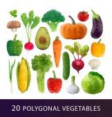 Set of Polygonal vegetables