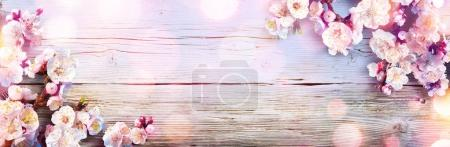Photo for Spring Banner - Pink Blossoms On Wooden Plank - Royalty Free Image