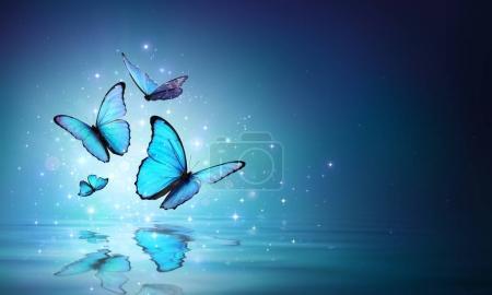 Photo pour Papillons bleus fées sur l'eau - image libre de droit